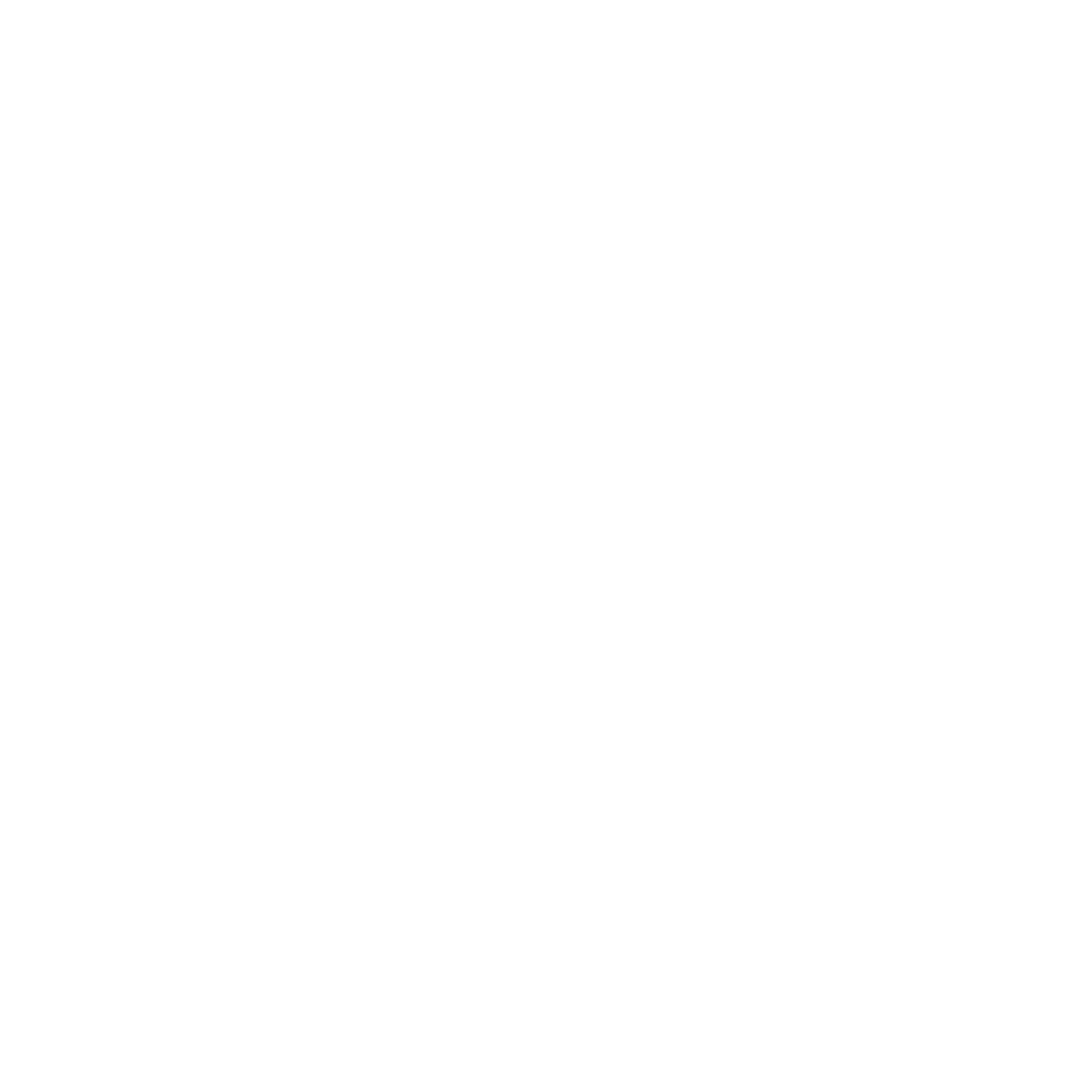 Kevin M Burns
