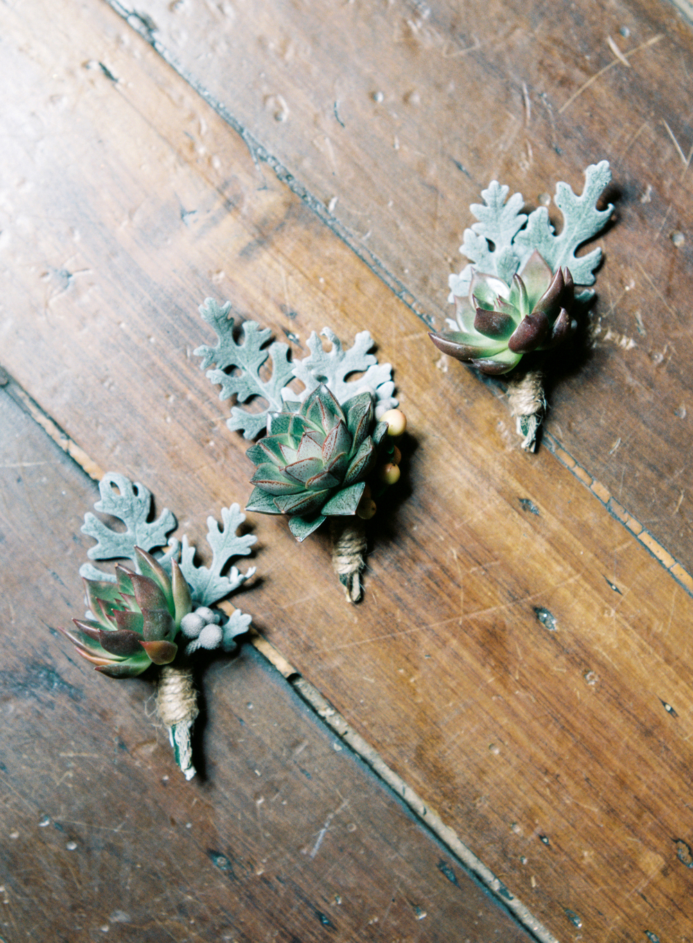 Succulent and dusty miller boutonnieres