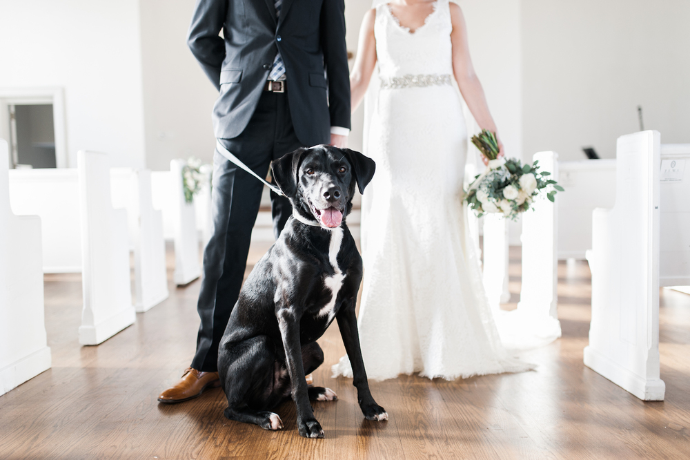 Bride and groom with dog // Organic floral design