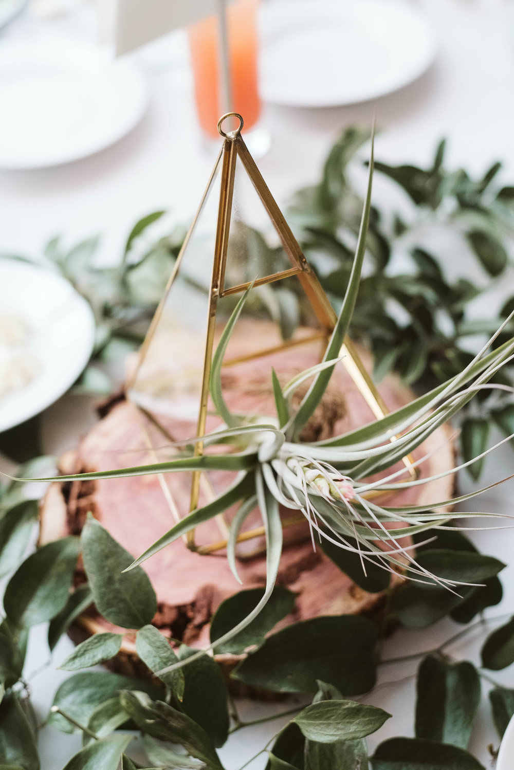 Gold geometric terrarium centerpiece with an air plant and greenery // Nashville, TN Wedding Florist