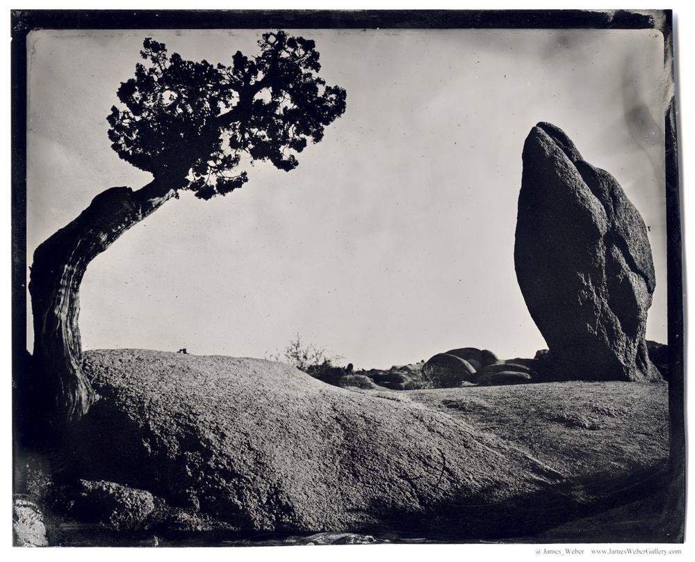 JAMES-WEBER-PHOTOGRAPHER-WET-PLATE-2014-00465.jpg