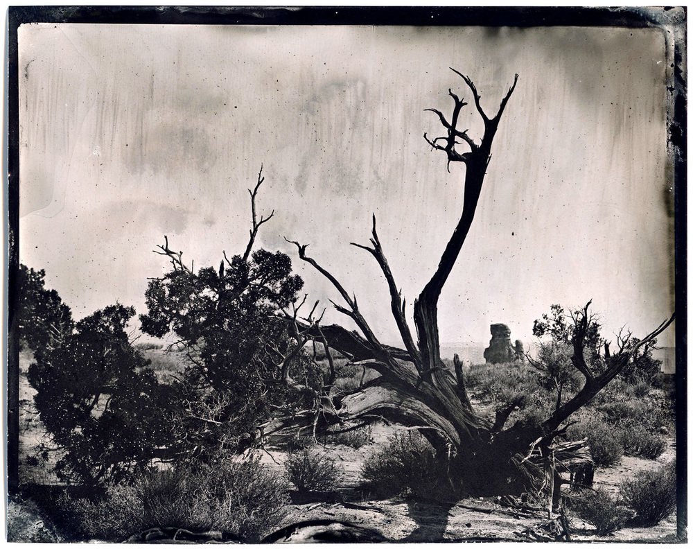 james-weber-wetplate-landscape-00550.jpg
