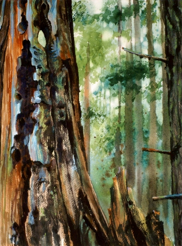 """Suze Woolf (American / WA)     Remnants     Watercolor on Paper, Framed    11"""" x 14""""    $400"""