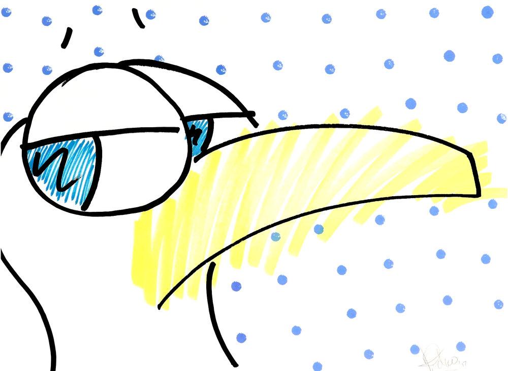 "gull pop ink on paper 24 x 36"""
