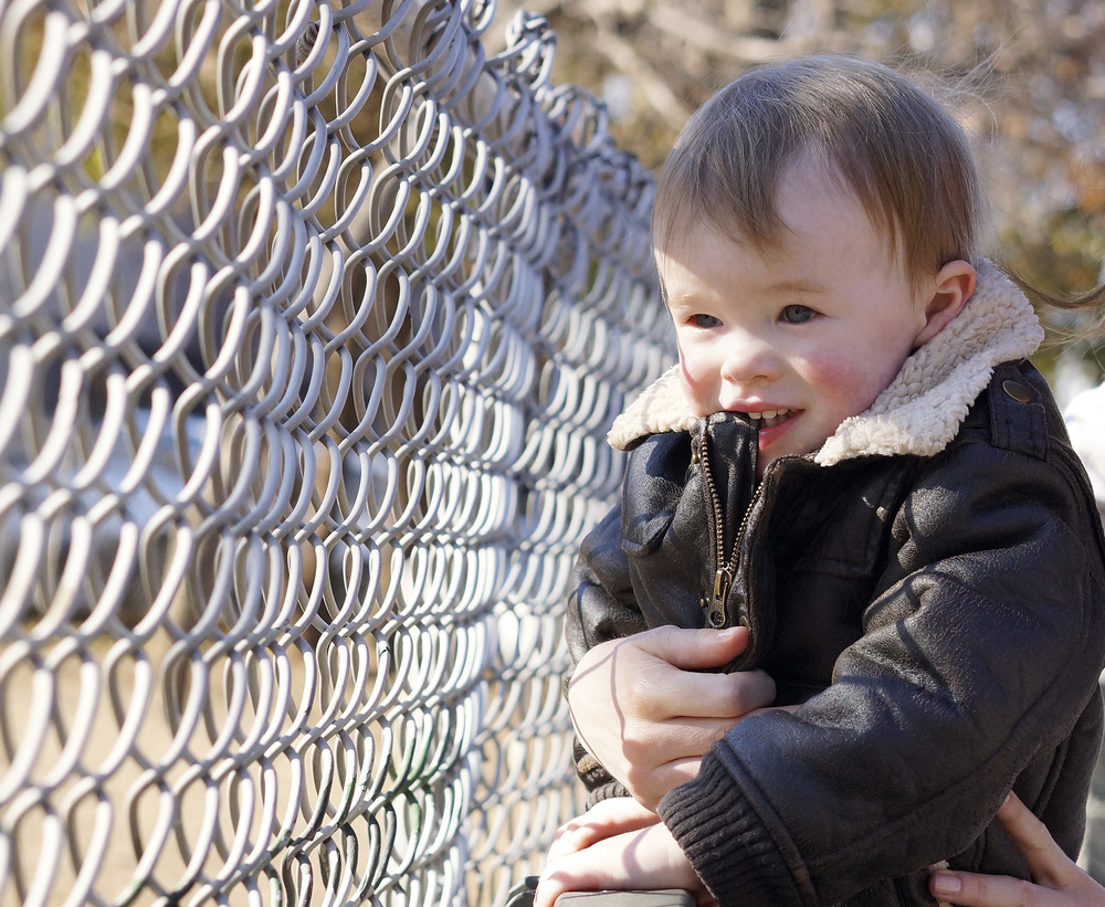 chainlink fence cropped.jpg