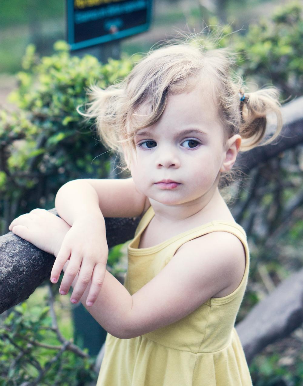 Hazel3-97_cropped.jpg
