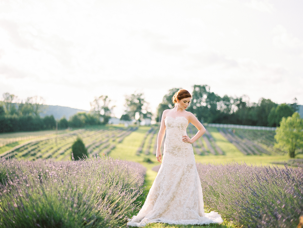 lavedner-field-wedding-bridal-portrait-inglewood