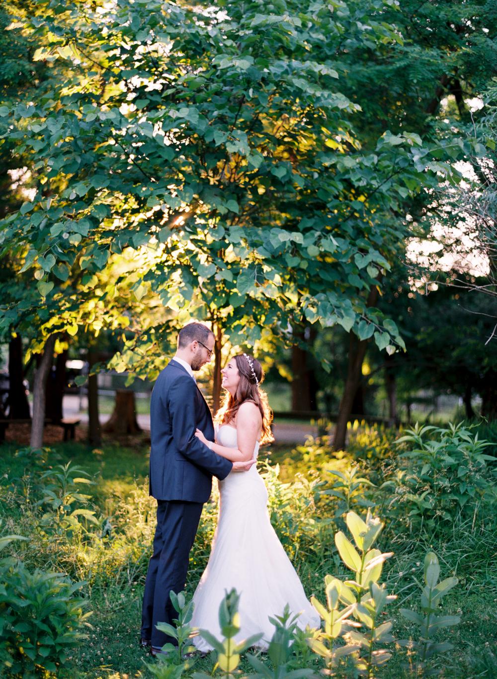 golden wedding portrait elisa bricker