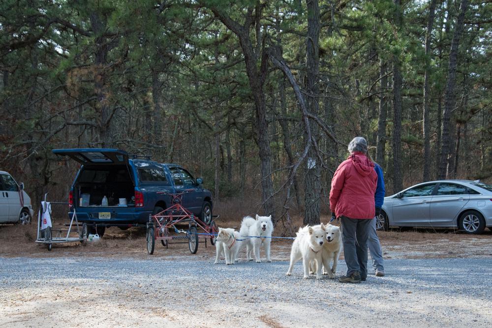 Pine-Barrens-Dryland_Run-November 30, 2013-26.jpg