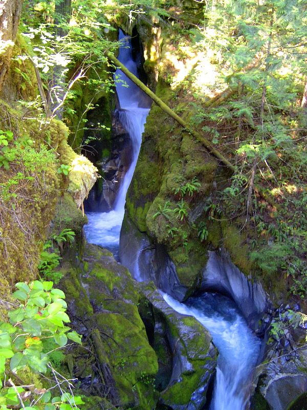Uppermiddle_Ladder_Creek_Falls.jpg
