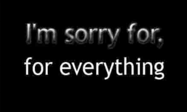 sorry for everything.jpg