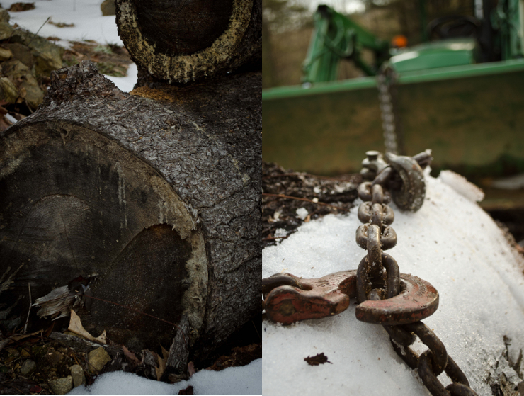 Old Pine Logs & Choker Chain