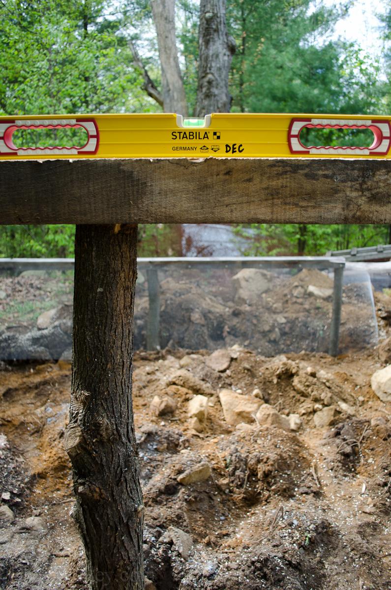 New Chicken Coop Run-9.jpg