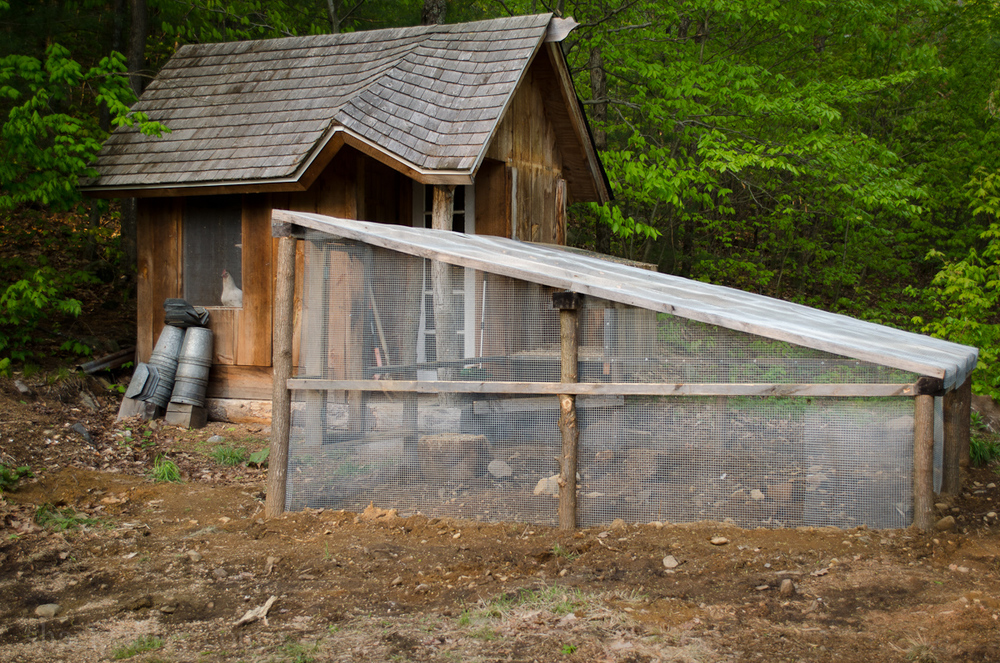 New Chicken Coop Run-6.jpg