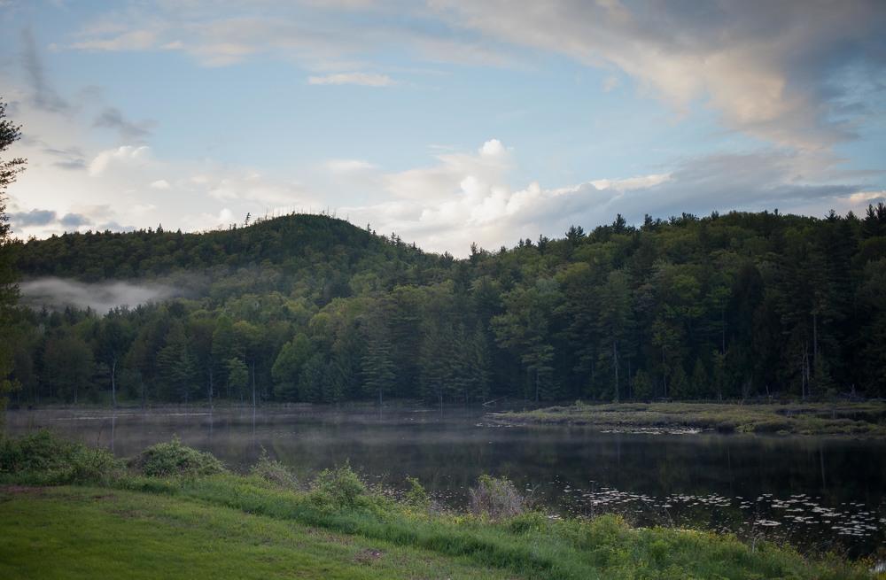 Conservation Pond