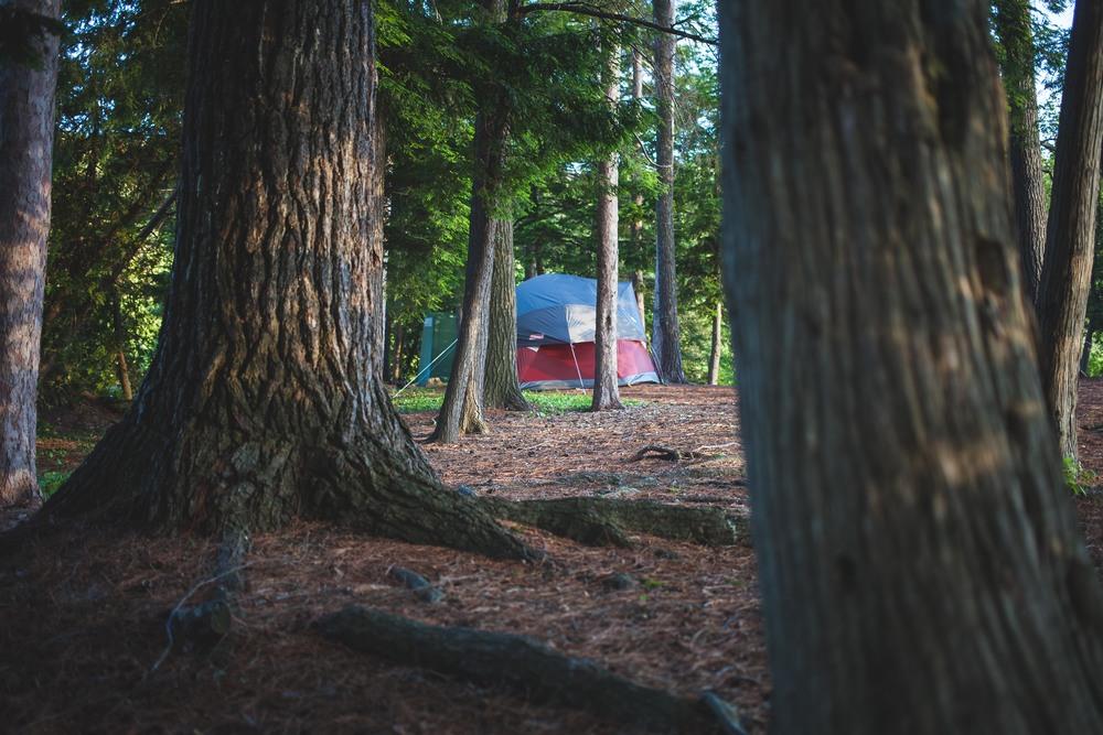 Huge Camping Tent
