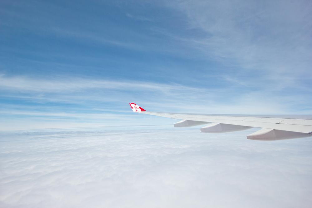 Plane wings .jpg