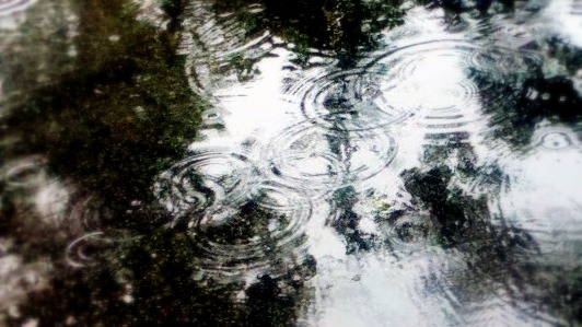 Raindrops-001.jpg