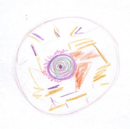 Circles, 7.26.10
