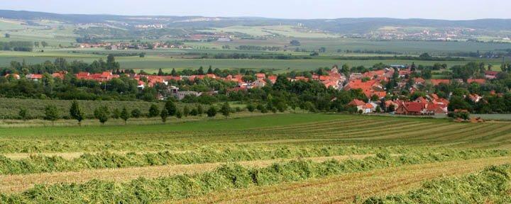 Austerlitz.jpg