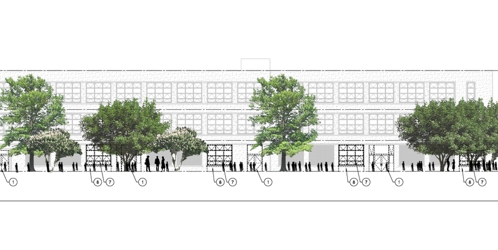 Illustrative section of trees in the school yard