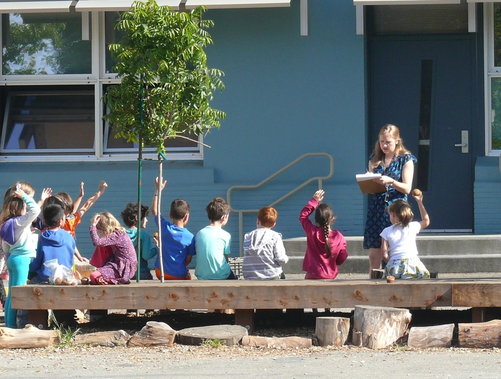 Outdoor learning area in use