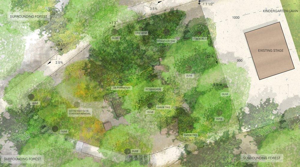 160816_TNS_Memorial Place Concept Forest Plan.jpg