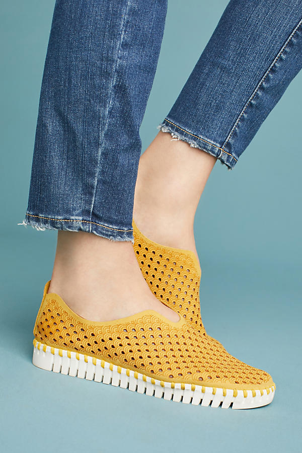 These are Ashley's sneakers! Ilse Jacobsen Tulip Perforated Sneakers. Available in multiple colors. Anthropologie. $78.