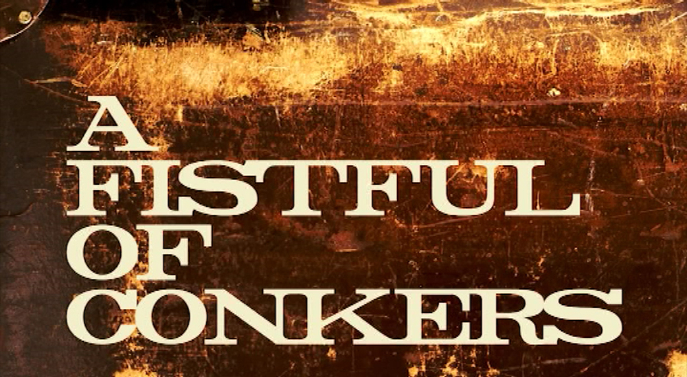 CHALLENGING BEHAVIOUR and A FISTFUL OF CONKERS SHORT FILM TITLES