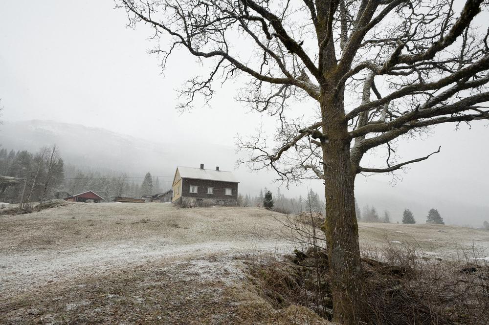 SØSKEN TIL EVIG TID_Eika og gården   Last ned BILDE