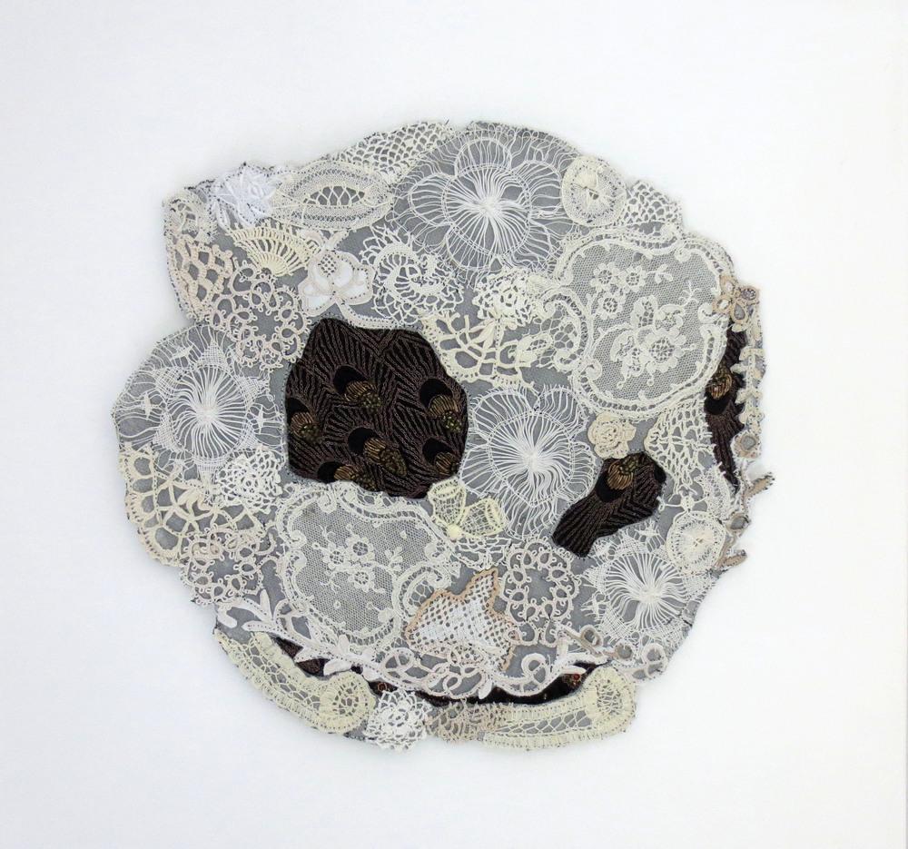 Midas 2012 - Green Sea turtle skull