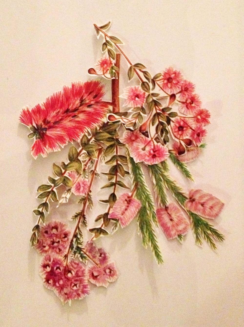 flora3.jpg