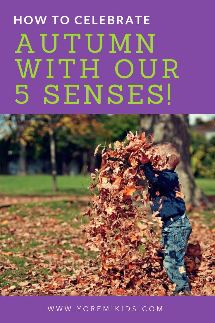 Autumn activity ideas for sensory integration - YRM