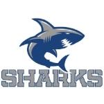 Sharks_Plain.jpg