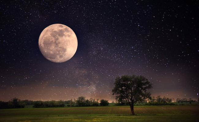 full rose moon.jpg