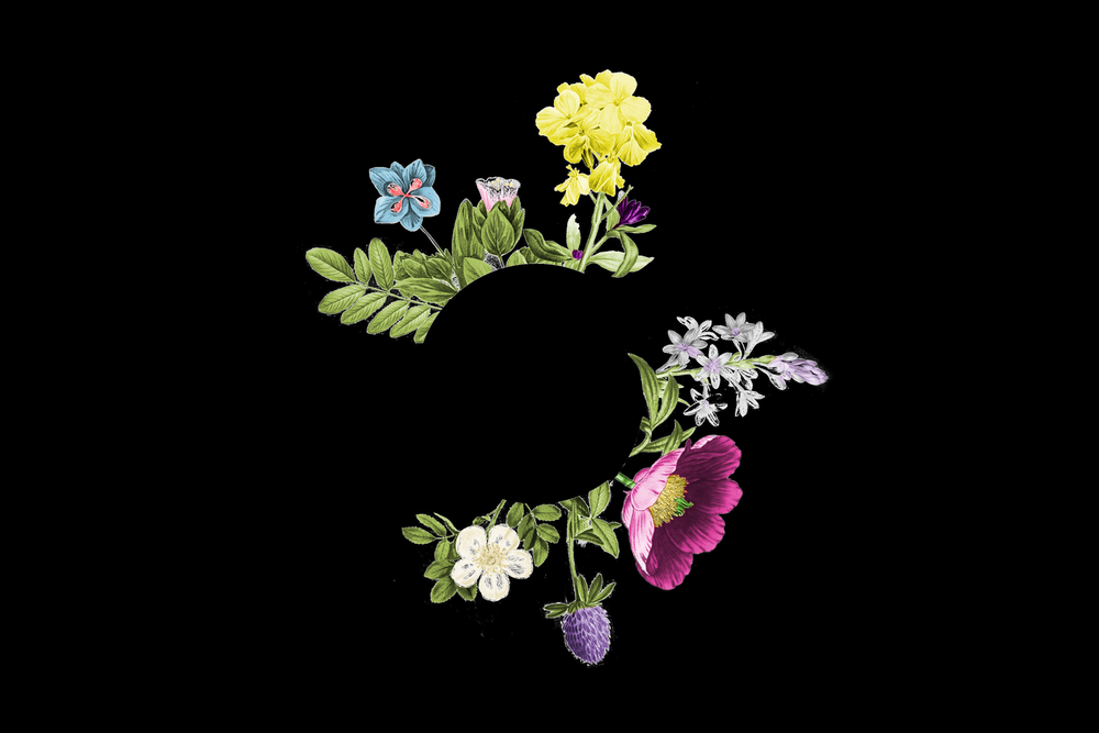O&S logo