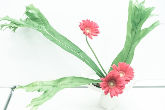 Okishima & Simmonds_Ikebana courses_Ohara school of ikebana_Tokyo_omotesando_Japan_8.jpg