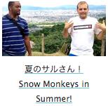 Snow Monkeys in Summer