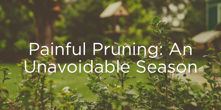 160412-pruning.png