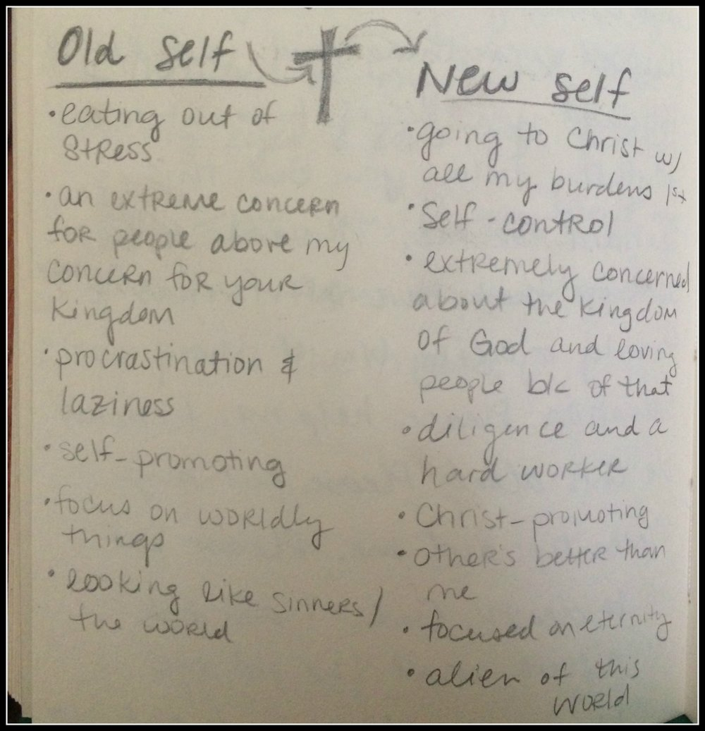 old new self chart