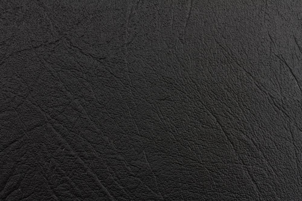 Coal Buffalo (1).jpg