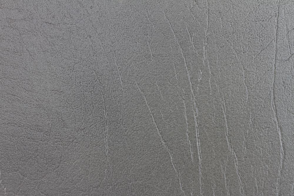Gray Thunder (2).jpg