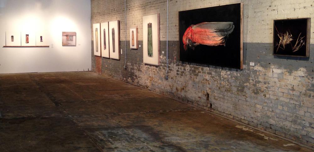 Installation views at Haen Gallery in Brevard