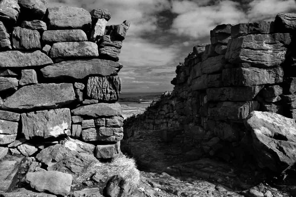 Walls, Aran Islands