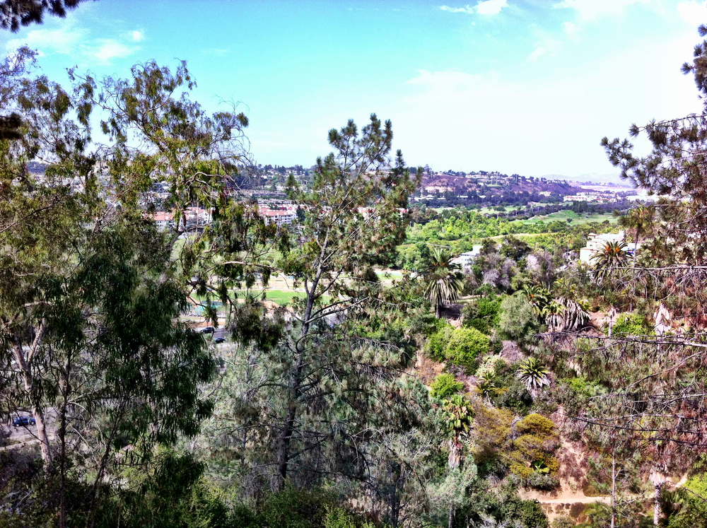 Mission Valley View