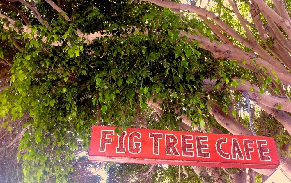 Fig Tree Café | 5119 Cass St | San Diego, CA | 858.274.2233 | figtreecafepb.com