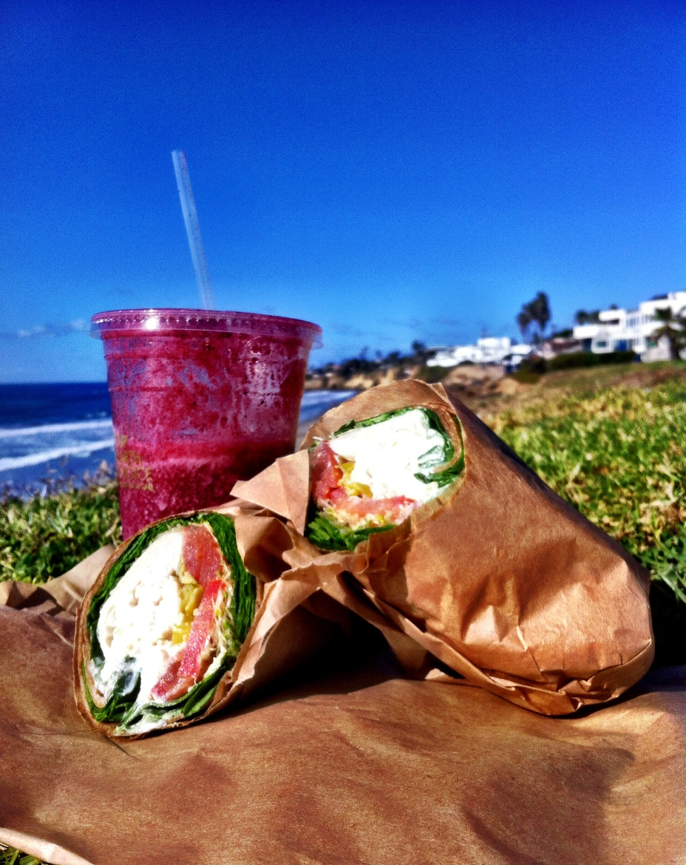 Lean and Green Cafe - Berry Oxidant and Rainbow Turkey Wrap