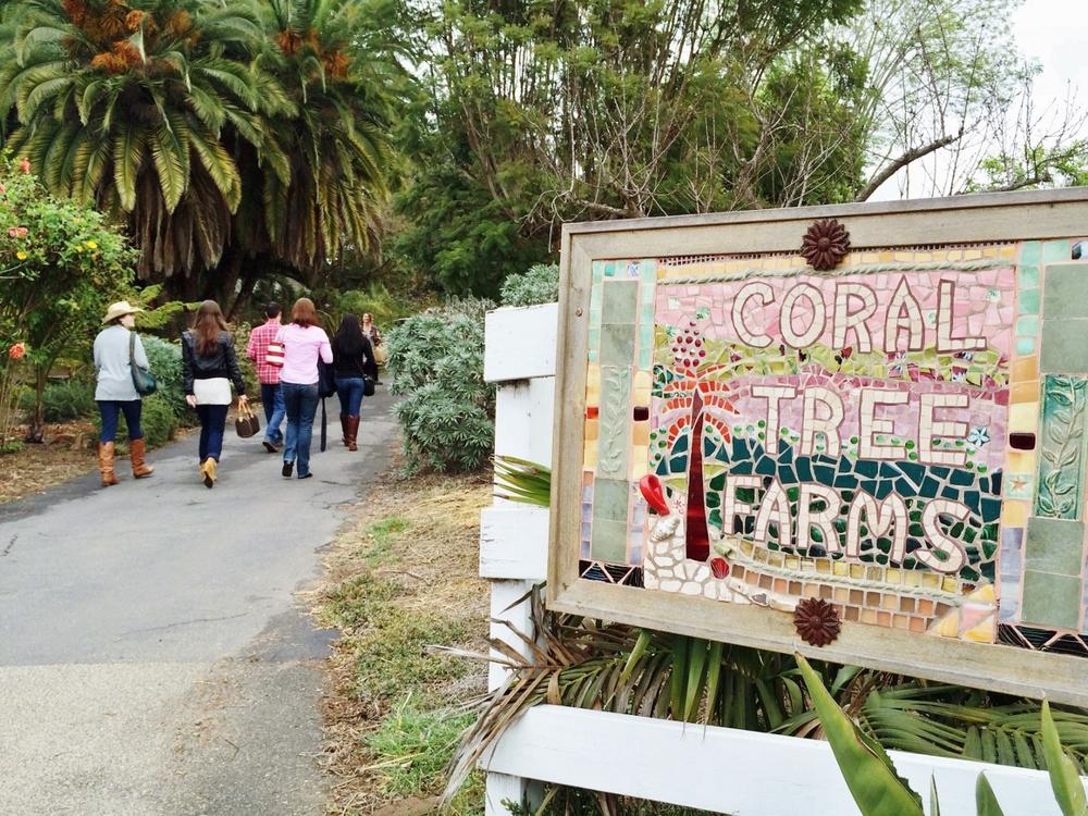 Coral Tree Farm   589 Park Ln, Encinitas, CA 92024   www.coraltreefarm.com