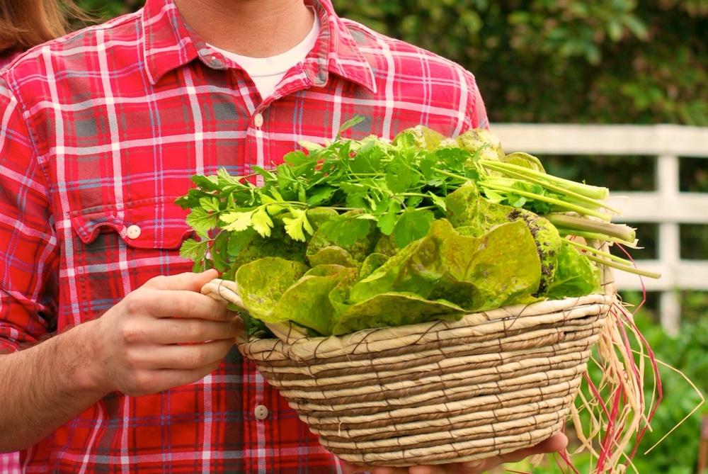 A True San Diego Farm To Fork Experience Encinitas Experience - Farm to table san diego