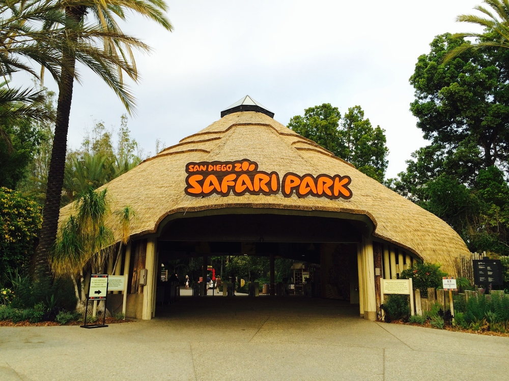 San Diego Zoo Safari Park | 15500 San Pasqual Valley Rd, Escondido, CA 92027